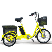 20 inch electric tricycle with 250w motor