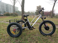 26*4.0 inch mtb electric tricycle with rear big cargo
